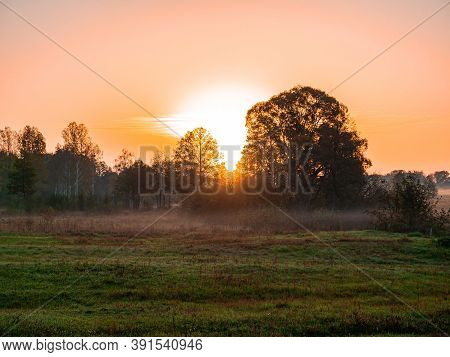 Orange Sunrise Over A Meadow In Fog. Orange Sunny Sunset Over The Horizon. Trees On The Horizon. Mor