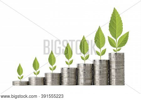 Business Investment And Saving Growth For Advertising Concept. Plant Growing On Stacking Coin On Iso