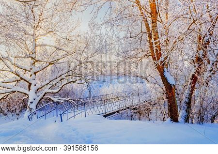 Winter landscape, winter frosty trees and snowy winter iron bridge in the winter park. Winter landscape background. Winter nature with winter snowy trees. Winter landscape snowy view