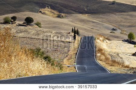 Road In Andalucia