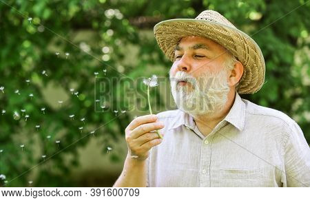 Harmony Of Soul. Peaceful Grandpa Blowing Dandelion. Happy And Carefree Retirement. Elderly Man In S