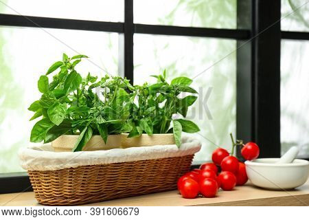 Green Basil, Tomatoes And Mortar With Pestle On Window Sill Indoors