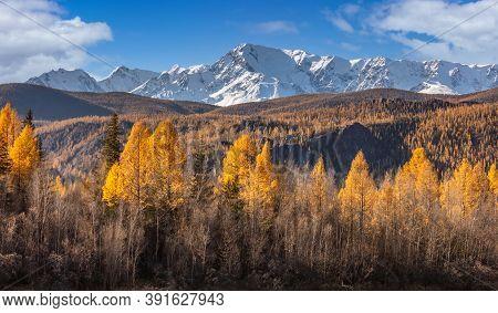 Scenic Panoramic Low Angle View Of Snowy Mountain Peaks Of North Chuyskiy Ridge. Beautiful Blue Clou