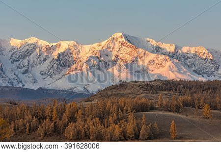 Beautiful Shot Of A White Snowy Mountain Ridge And A Valley With Golden Trees In The Foreground. Sun