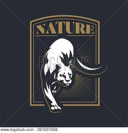 The Wild Cat Turned Its Head Back And Raised Its Paw. Panther, Puma. Stylized Vector Illustration.