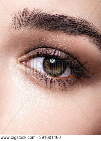 Closeup Of A Young Womans Eye With Classic Makeup, Glowing Fresh Skin, Perfect Brows And Lashes. Fac