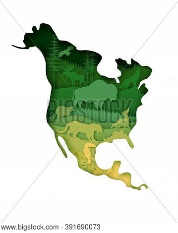 Mainland North America Map With Wildlife, Vector Illustration In Paper Art Style.