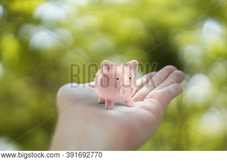 Piggy Bank In Holding Hand.  Saving Money Concept.