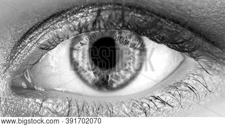 Human Eyes Close-up Detail. Macro Pupil Retina Human Colse Eye, Eyeball. Female Eyes With Long Eyela