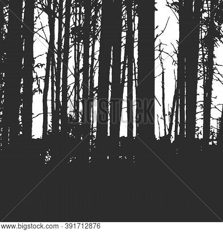 Forest Texture For Background On Emblem Or Overlays On Photo. Black And White  Print
