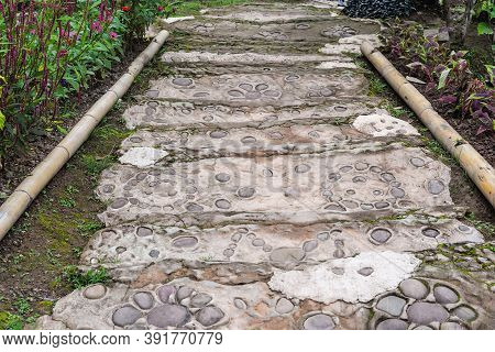 A Pedestrian Path Made Of Stones And Cement Of ิbear Feet Shape For Walking The Garden. The Walkaway