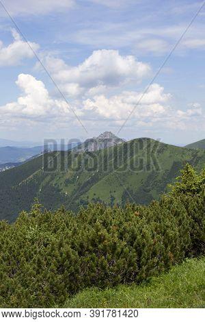 Slovak Mountain Little Fatra, Mala Fatra, In The Summer, Slovakia