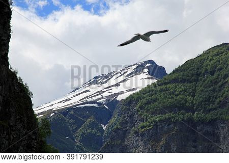 The View On Nature Of Sognefjord, Norway