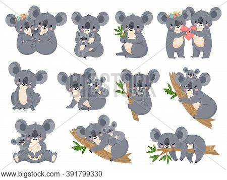 Cute Koala And Baby. Cartoon Little Koalas With Moms. Australian Bear Loving Couple Hug. Baby Shower