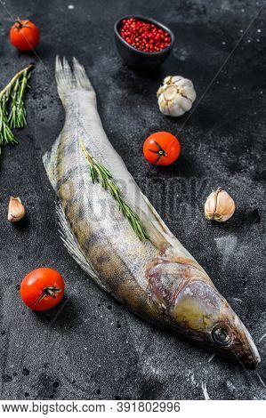 Raw Zander, Walleye Fish With Herbs. Black Background. Top View