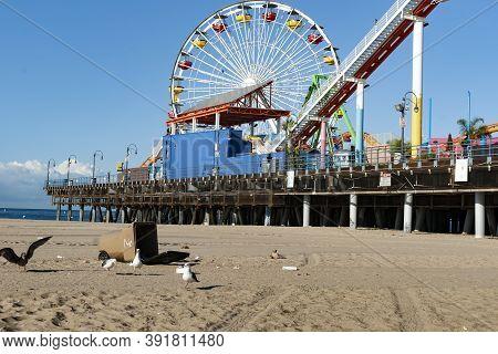 Los Angeles Usa _october 6 2015; Seagulls Scavenge Around Upturned Trash Bin On Beach Below Famous S