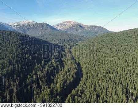 The Road Through The Forest To Mount Hoverla, The Carpathian Mountains In Ukraine.