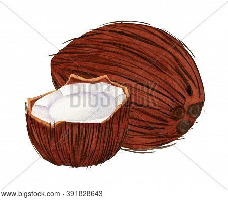 Whole Coconut And Cracked Half Of Fruit Isolated On White Background. Set Of Two Coconuts In Waterco