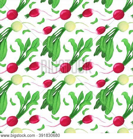 Red And White Radish Seamless Pattern. Daikon Leaves And Haulm Watercolor Elements. Fresh Vegetable