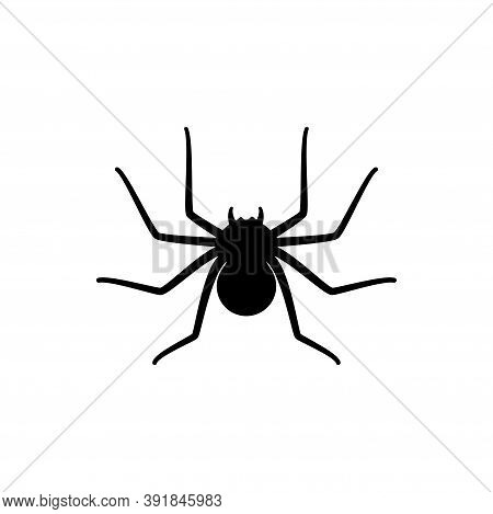 Spider Silhouette Icon. Halloween Decoration Or Tattoo Template. Simple Widow Outline Sketch. Horror