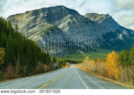 Rural Road In The Forest With Mount Stelfox In The Background. Alberta Highway 11 (david Thompson Hw