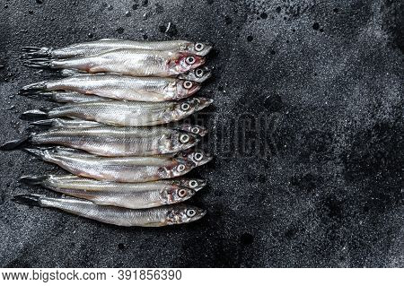 Raw Fresh Capelin Fish. Black Background. Top View. Copy Space