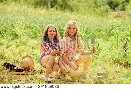 Sisters Together Helping At Farm. Girls Planting Plants. Garden And Beds. Planting And Watering. Rus