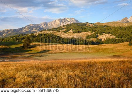 Green Valley Nature Landscape. Mountain Layers Landscape. Summer In Mountain Landscape. Meadow And M