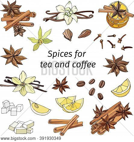 Set Of Cinnamon, Anise, Lemon, Vanilla And Cloves On A White Background. Hand-drawn Spices For Tea A