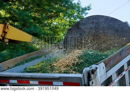 Professional A Wood Chipper At Work Machinery Shredder Placed In For Chipping