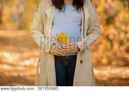 Unrecognizable Pregnant Woman Holding Yellow Autumn Leaf In Front Of Her Belly At Park. Cropped View