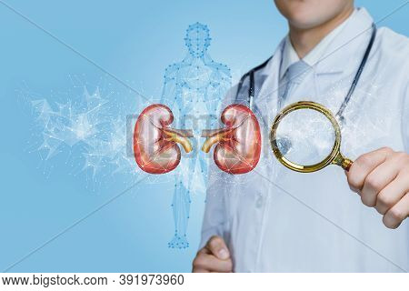 The Concept Of Diagnosis And Treatment Of Kidney Disease.