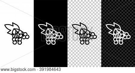 Set Line Branch Viburnum Or Guelder Rose Icon Isolated On Black And White Background. Healthful Vibu