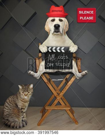 A Dog Director Is Sitting On A High Chair And Holding A Clapperboard With Inscription All Cats Are S