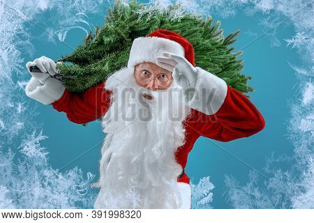 Santa Man Carrying Artificial Christmas Tree. Christmas, New Year, Holidays. Bearded Man Dressed In
