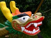 this is the head of the dragon from a dragon boat poster