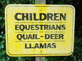 "Rural sign, reading: ""Children, equestrians, quail, deer, llamas"" poster"