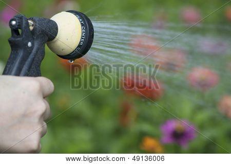 watering flower garden