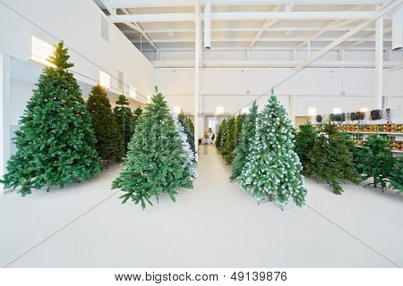 Storage room with rows of artificial Christmas trees and fairy lights on shelves