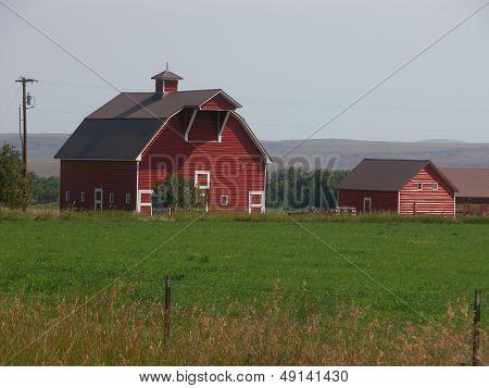 Red Barn on Oregon Farm