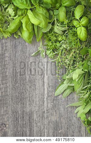 Fresh Herbs Over Grey Wooden