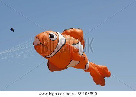 Orange And White Nemo Clownfish Kite Close Up