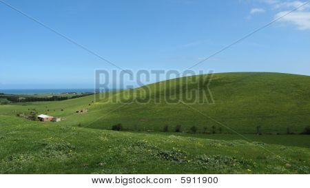 Coastal Country Farm