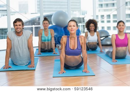 Portrait of a fit class doing the cobra pose in a bright fitness studioPortrait of a fit class doing the cobra pose in a bright fitness studio