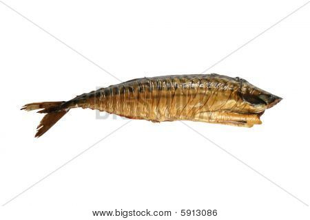 one smoked appetizing mackerel on white background poster