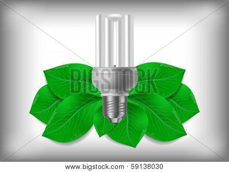 Energy Saving Bulb And Green Leaves