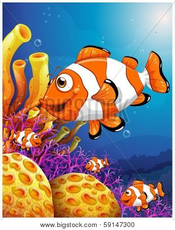 Illustration of a school of fish near the beautiful coral reefs on a white background