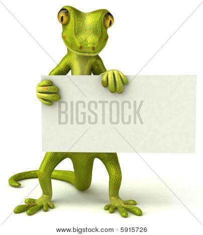 Green gecko