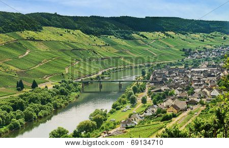 Town Zell And Moselle River, Germany