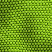 Reptile skin texture background abstract for design and decorate poster